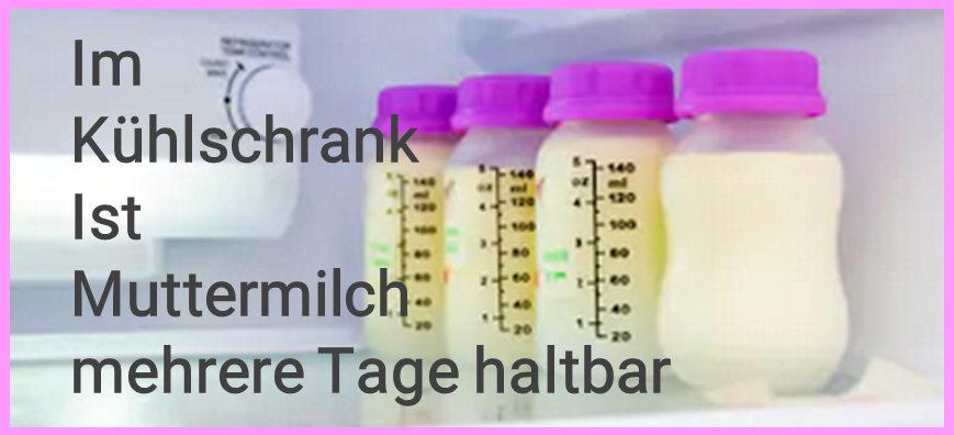 Muttermilch in Milchflasche im Kühlschrank